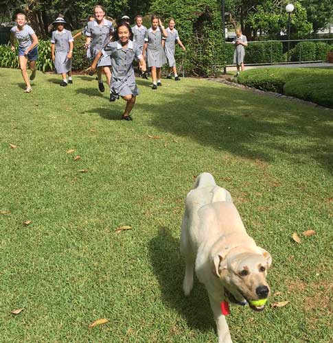 year-7-with-guide-dog-WEB